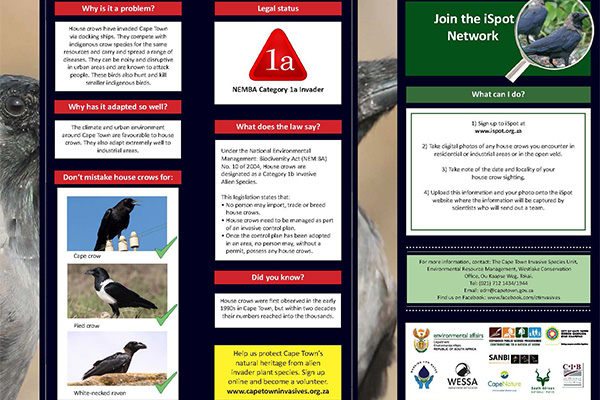 House crow ID Kit Page 2PS